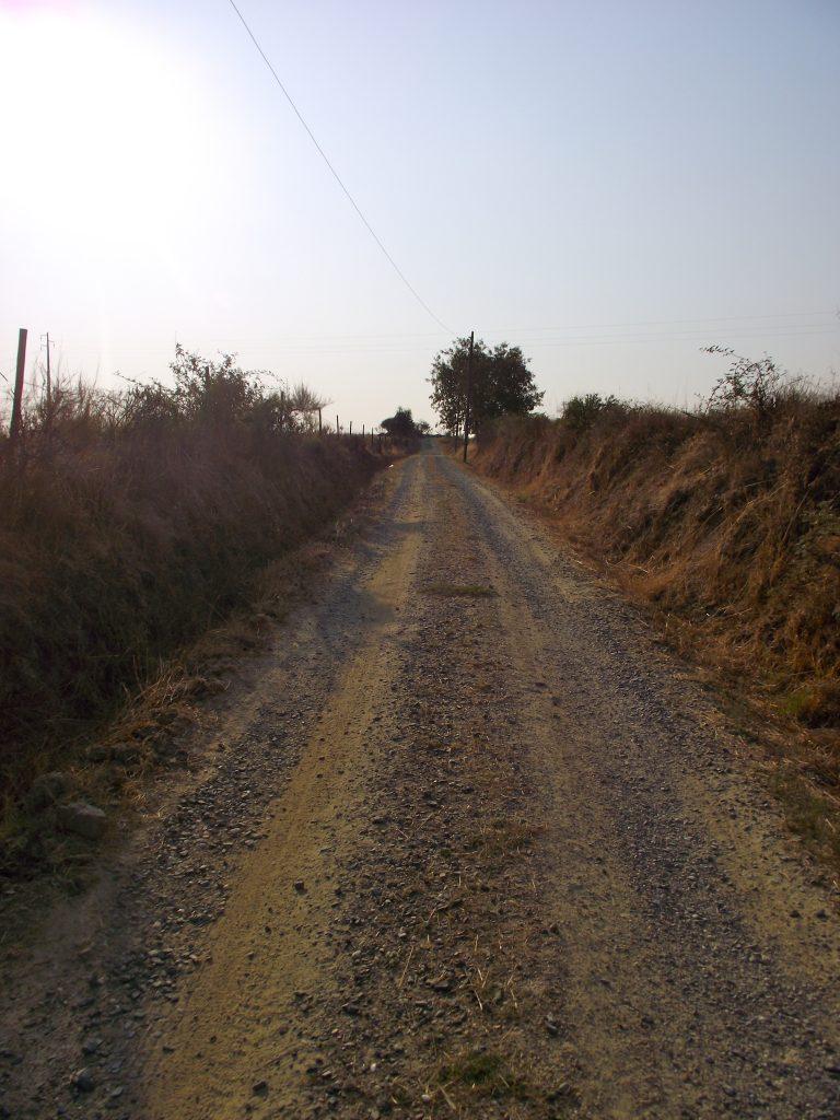 Poetic Footsteps: Local Walking Trail